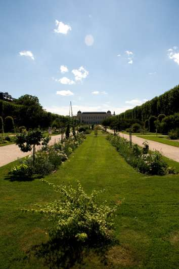 Jardins où la nature surprend