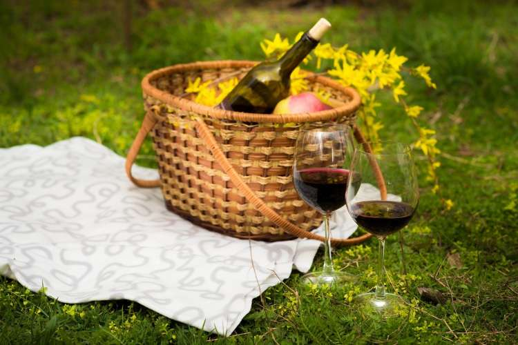 Picnic Green Glass Wine Yellow Food Basket